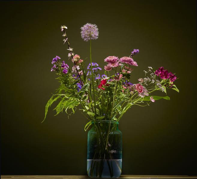 Bloemen, Flowers ,fotograaf, product , Limburg ,packshot ,B2C, packshots